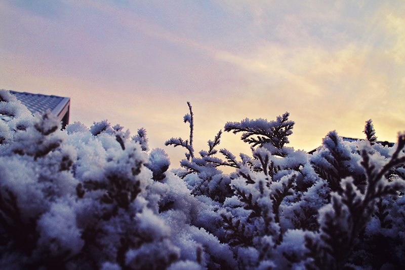 snow_2015_1_webben